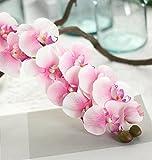 ZEZKT-Home Künstlicher Phalaenopsis Zweig Deko Blüten Zweig Kunst Orchideen Blume Orchidee Lila Wandbild Dekoration Blumen Wellness Spa Blüten Natur Foto-Tapete Wandtapete Fotoposter (72cm, Rosa)