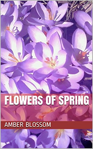 Flowers of Spring (English Edition) - Amber Blossom