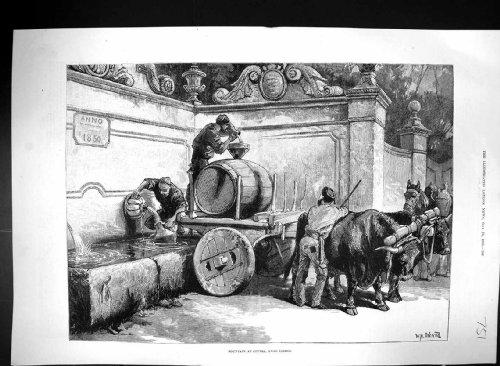 antiker-druck-von-wagen-1883-overend-brunnen-cintra-lissabon-portugal-stier