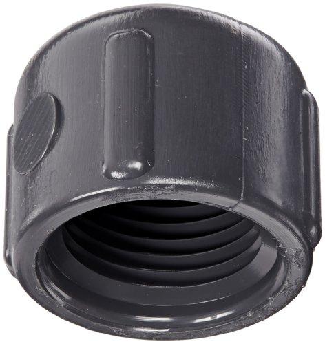 Spears 448-g Serie PVC-Rohr Fitting, GAP, Schedule 40, Grau, NPT weiblich, 3/8