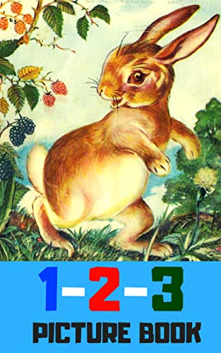 1 2 3 picture book: Number for kid and song (book for kids) (English Edition)
