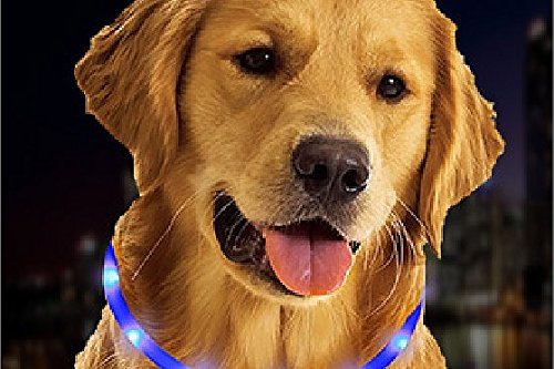 LED Dog Collar, LaRooTM Flashing LED Dog Safety Collar Rechargeable Light Up Pet Cat Safety Collar and Adjustable Size Fit for All Dog, Cat and Pets 2