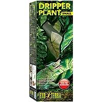 Exo Terra Dripper Plant mit Pumpe -small