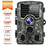 Best Game Cameras - Distianert DH-8 Trail Camera 16MP 1080P 2019 Upgraded Review