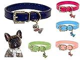 Lushpetz Original Design Hundehalsband aus Leder mit freiem, graduiertem Hundeanhänger XSmall Small Medium Große Größen (Mittel, Dunkelblau)