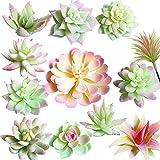 Aisamco 12 Pcs Artificielles Plantes Succulentes Rose et Blanc Faux Fleur Succulentes Mini Echeveria Pics Tiges en Vrac pour La Maison Intérieur Fée Jardin Décorations
