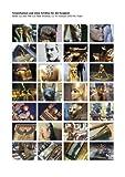 Tutanchamun und seine Schätze für die Ewigkeit - Peter Wimmer