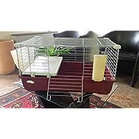 Gabbia per conigli nani e cavie tommy 72x44x39h (Biancheria Oak Bed)