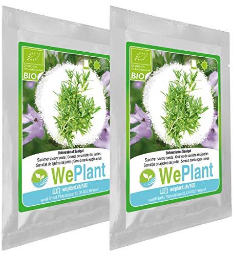 BIO Bohnenkraut Pflanzen-Samen Set - indoor/outdoor