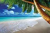 GREAT ART Fototapete Strand und Meer Sand Palmen Himmel Blau See Paradies Natur Deko Wandbild Wand-Tapete 336 x 238 cm