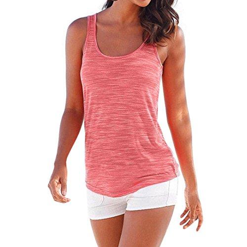ESAILQ Damen schicke sommershirts für halbarm Moderne vorne kurz hinten Ausschnitt seidenshirt Elegante weißes Sweatshirt mit reißverschluss Bedruckte Frauen(XL,Wassermelonenrot)
