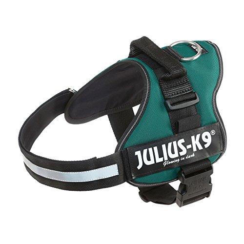Julius-K9 162DG-1 Power Harness, Tamaño 1, Verde Oscuro