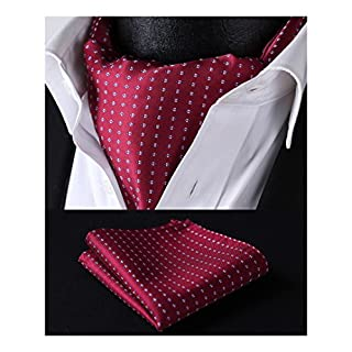 HISDERN Men's Check Polka Dot Floral Jacquard Woven Ascot Set, One Size, Red Blue