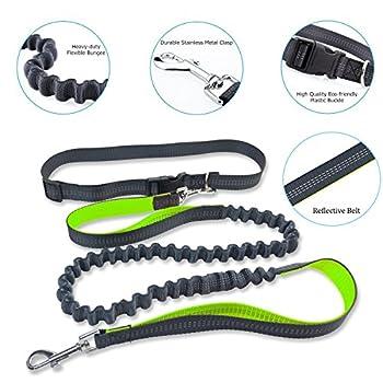Laisse de chien rétractable - Cordon de traction en nylon mains libres avec des élastiques (47 ~ 75 pouces) et ceinture réglable (29 ~ 49 pouces) pour la course à pied