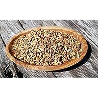 "Portal Cool 100 Semillas: Semillas""Arborio blanca"" arroz, Oryza Sativa, White Arborio arroz, Norditalien"