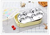 LWVAX Stainless Steel & Plastic Lunch Box for School Lunch Bento Container Rectangle