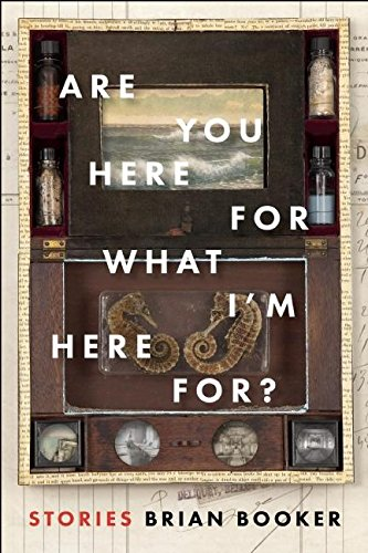 Are You Here For What I'm Here For? -