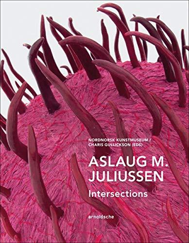 Aslaug m. Juliussen : Intersections