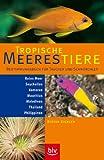 Tropische Meerestiere: Bestimmungsbuch f. Taucher u. Schnorchler - Rotes Meer, Seychellen, Komoren, Mauritius, Malediven, Thailand -