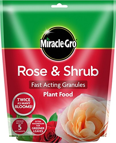 miracle-gro-rose-arbuste-plant-food-750gm-pouch