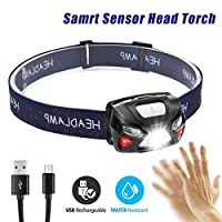 SUSHJA Running Head Torch LED Super Bright - Rechargeable DIY Head lamp With 8 Induction Modes, Waterproof, Lightweight, Headlight, Camping, Fishing, Hiking[USB Cable Included]