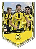 BVB Kalender 2018 - Borussia Dortmund Kalender, Minibannerkalender BVB, Fußballkalender - 21 x 29,7 cm