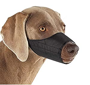 YouGer Adjustable Pet Dog Mouth Cover, Anti-biting Barking Muzzles Mesh Mask Small Medium Large Extra Dog(Black,25cm) by YouGer