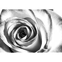 Leinwandbild Canvas Wandbild Kunstdruck Blumen rote Rose auf Gitarre Rosenblüte