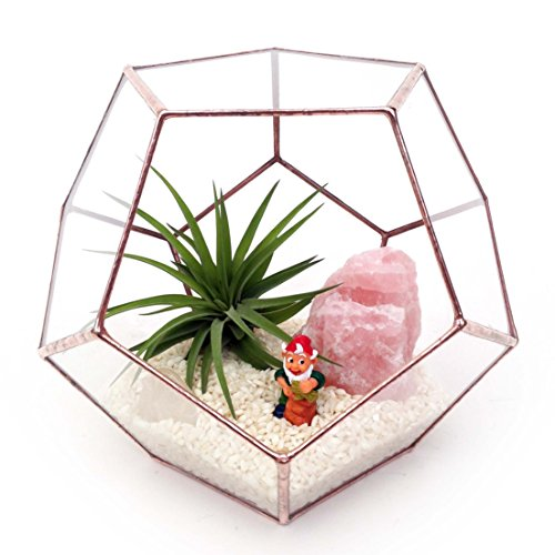 dodecahedron-large-geometric-glass-terrarium-handmade-glass-planter-modern-planter-for-indoor-garden