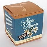 Geschenk-Anzuchtset Alpenedelweiss -
