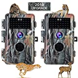 BlazeVideo Cámaras de Caza 16MP 1080P, Cámara de Seguridad de Vigilancia para Animales y Aves de Corral, Detección de Movimiento PIR, LED IR de 38 Piezas, LCD de 2.4 Pulgadas, 2 Piezas
