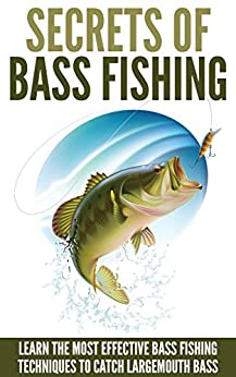 BASS | meaning in the Cambridge English Dictionary