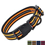 Mile High Life Night Reflektierende Doppelstreifen Nylon Hundehalsband (Orange, Mittlerer Hals 35.5cm - 48cm -18kg)