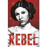 Grupo Erik Editores Poster Star Wars Leia Rebel