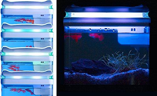 Sweetypet Aquarium: Transport-Fischbecken mit Filter, LED-Beleuchtung und USB, 3,3 Liter (Aquarium-Set) - 7