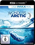 Wonders the Arctic (4K kostenlos online stream