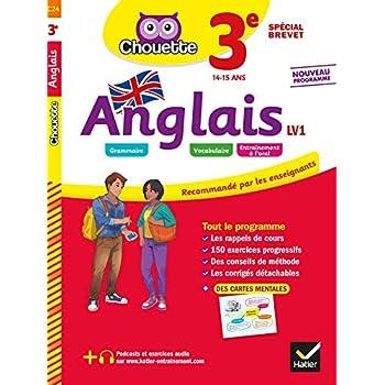 Anglais 3e - LV1 (A2+, B1): cahier d'entraînement et de révision