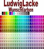 Ludwig Lacke Premium Spray Set mit 2 K Klarlack im Wunschfarbton