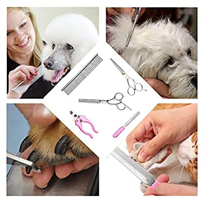 Dog Clippers, Professional Electric Cat Dog Grooming Clippers Kit with 4 Comb/Scissors/Nail File/Claw/Hair Clippers… 3
