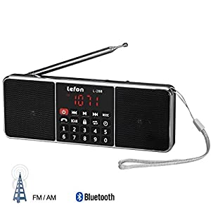 LEFON Mutifunctional Dual Channel Digital Radio Media Speaker MP3 Music Player Support TF Card / USB Disk with LED Screen Display and Clock Function by Lefon