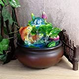 AUNMAS Mini Desktop Brunnen Feng Shui Lucky Fish Indoor Springbrunnen für Zuhause Schreibtisch Dekoration (Eu-stecker 220-240 V)