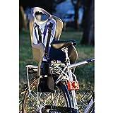 Walser 15409 Fahrradkindersitz Buddy beige