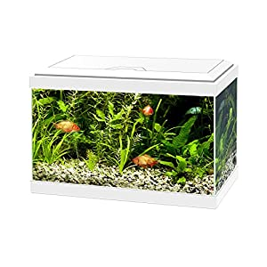 Ciano Aqua 20 Aquarium with LED Lights & Filter WHITE