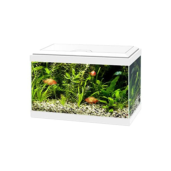 Ciano Aqua 20 Aquarium with LED Lights & Filter WHITE