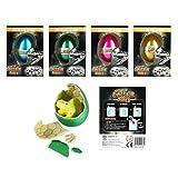 Dinosaurier-Ei zum Ausbrüten & Wachsen, 6cm, in zufällig sortierten Farben