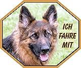 Petsigns Autoaufkleber Deutscher Schäferhund - Fahre mit!, 15 x 12,5