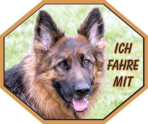 Petsigns Autoaufkleber Deutscher Schäferhund - Fahre mit!, 22 x 18,5