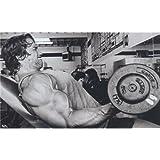 Arnold Schwarzenegger (40inch x 24inch / 99cm x 60cm) Silk Print Poster - Seide Plakat - 673A34