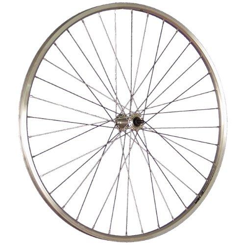 Taylor Wheels 28 pollici ruota anteriore Schürmann bici YAK19 622-19 argento