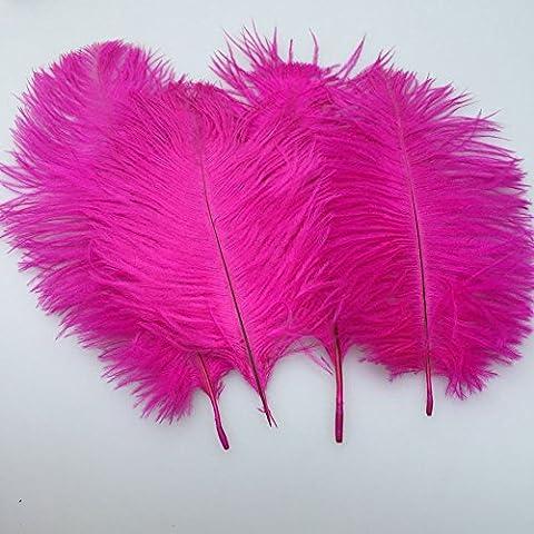 SOWDER 20Natur 25,4–30,5cm (25–30cm) Strauß Federn Plume für Hochzeit Aufsteller Home Dekoration fuchsia